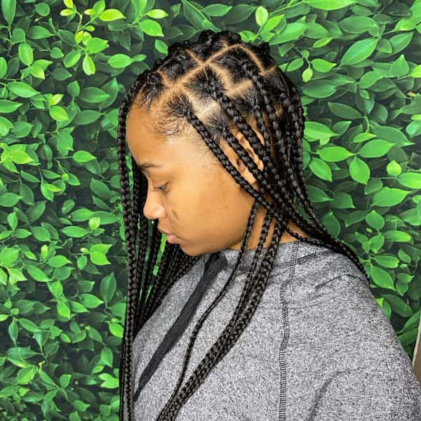 African Box Braid Hairstyle